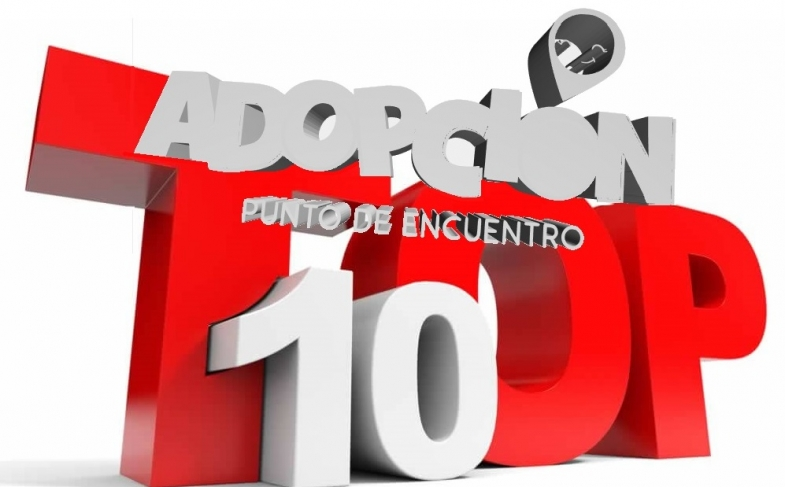 TOP TEN Post del año 2017